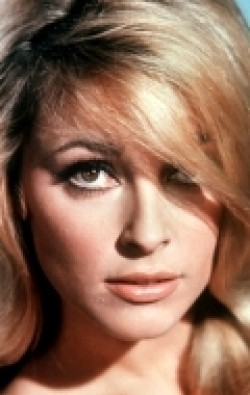 Best Sharon Tate wallpapers