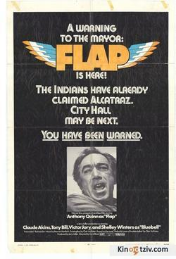 Flap picture
