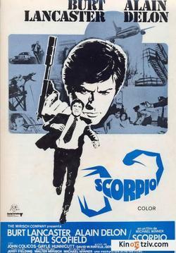 Scorpion picture