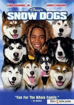 Snow Dogs picture