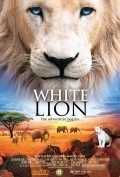 White Lion - wallpapers.