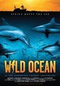 Wild Ocean - wallpapers.