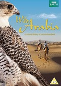 Wild Arabia - wallpapers.