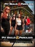 Pit Bulls and Parolees pictures.