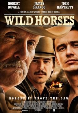 Wild Horses pictures.