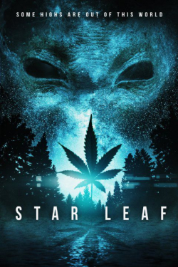 Star Leaf pictures.