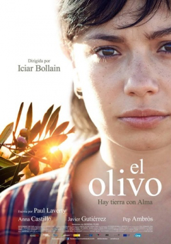 El olivo - wallpapers.
