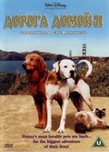 Homeward Bound II: Lost in San Francisco pictures.