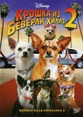 Beverly Hills Chihuahua 2 pictures.
