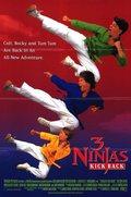 3 Ninjas Kick Back pictures.