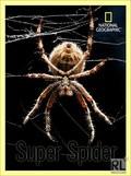 Super Spider pictures.