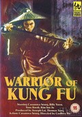 Warriors of Kung Fu - wallpapers.