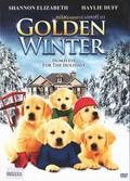 Golden Winter pictures.