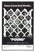 Pound - wallpapers.