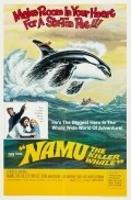 Namu, the Killer Whale pictures.