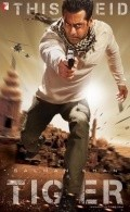 Ek Tha Tiger - wallpapers.